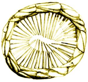 Harp B 05.png 10%
