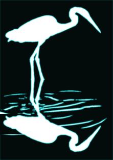 Egret 04